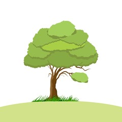 tree cartoon design for comic or illustration