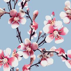 Apple tree flowers Illustration. Watercolor seamless pattern.