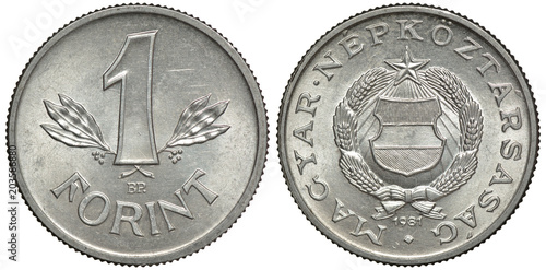 Hungary Hungarian Aluminum Coin 1 One Forint 1981 Value In Front Of Crossed Sprigs
