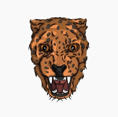 Portrait of a leopard. Can be used for printing on T-shirts, flyers and stuff. Vector illustration