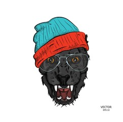 Portrait of a leopard in the cap. Can be used for printing on T-shirts, flyers and stuff. Vector illustration