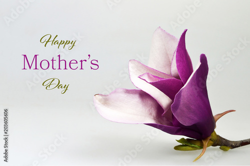 Happy Mothers Day card with magnolia flower on wooden background