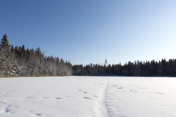 Snow landscape in Finland. Sunshine and blue sky.