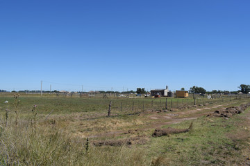 pioneers, a new settlement is being built far from the city, the first houses in the middle of the field
