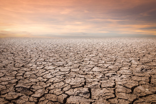 Land with dry and cracked ground. Desert,Global warming background