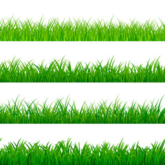Seamless gorisontal grass border. Green herbal panorama pattern. Grass texture elements. Vector illustration isolated on white