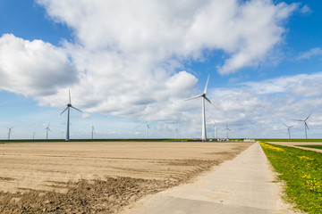 Wall Mural - Wind turbine park along the dikes in the Neterlands