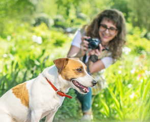 Young happy smiling woman photographer taking a photo of sitting small dog jack russel terrier outside in green summer park at sunny day. Hobby or Photographer job