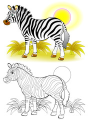 Colorful and black and white pattern for coloring. Illustration of cute zebra. Worksheet for children and adults. Vector image.