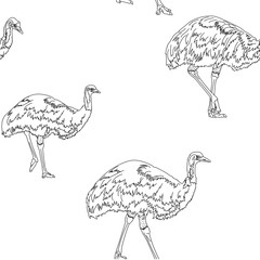 emu birds seamless texture black