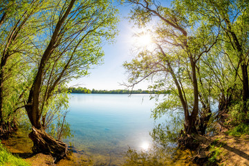 Fototapete - Lake with trees and bright sun on a hot summer day