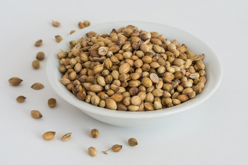 Coriander Seeds in a white bowl
