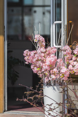 Street cafe flowers and herbs decor concept