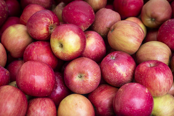 Organic Apples at a Local Farmer's Market