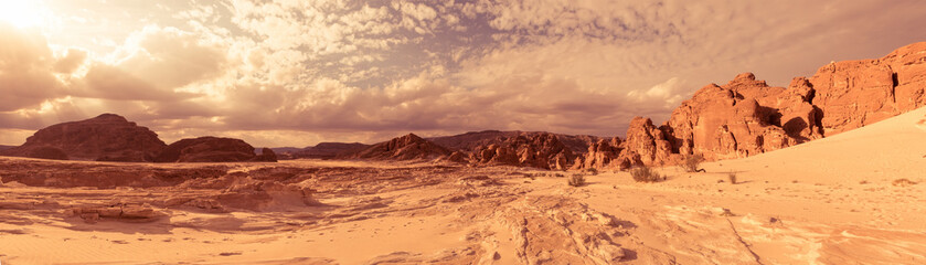 Foto op Canvas Droogte Panorama Sand desert Sinai, Egypt, Africa