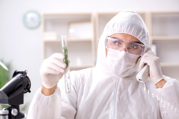 Biotechnology scientist chemist working in lab