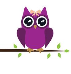 Vector Owl Bird