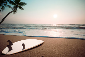 Fototapete - Surfboard on tropical beach at sunset in summer. landscape of summer beach and palm tree at sunset. Vintage color tone