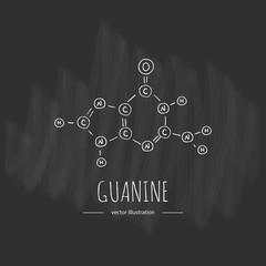 Hand drawn doodle Guanine chemical formula icon Vector illustration nitrogenous base symbol Cartoon sketch genome element DNA component on chalkboard background Carbon Atom Nitrogen Molecule Bond