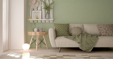 Idea of green minimalist room with sofa. Scandinavian interior design. 3D illustration