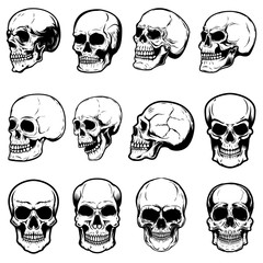 Set of human skull illustrations on white background. Design element for label, emblem, sign,logo, poster.