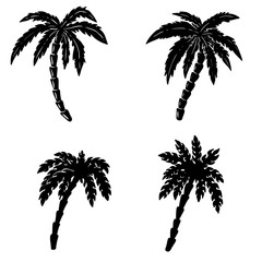 Set of hand drawn palm illustrations on white background. Design elements for poster, emblem, sign, badge.