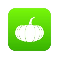 Ripe pumpkin icon digital green for any design isolated on white vector illustration