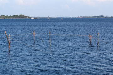 fishing nets in the Veerse Meer