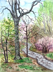 Spring landscape, hand drawing with watercolor and liner. View of the park with a path, sketch.