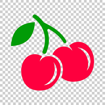 Cherry berry vector icon. Cherries illustration on on isolated transparent background. Sweet cherry healthy food.