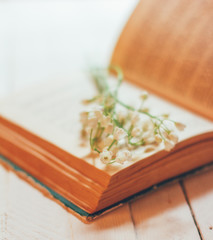 Wall Murals Lily of the valley bouquet of Lily of the valley flowers on an open old book on a white vintage table, shallow depth of field