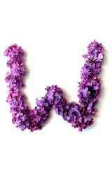 Lilac alphabet