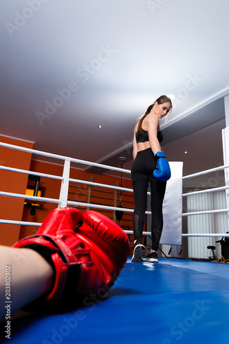 What is the difference between a girl boxer and a boy boxer?