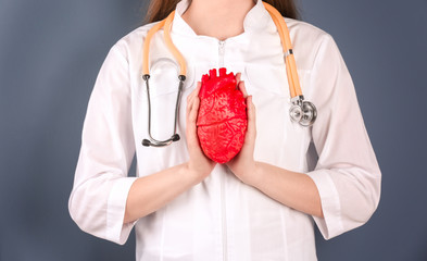 Doctor holding model of heart on color background. Prevent heart attack