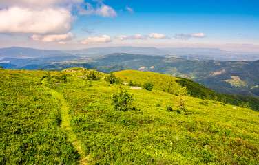 tourist footpath through mountain ridge. beautiful summer landscape under the gorgeous blue sky with some clouds