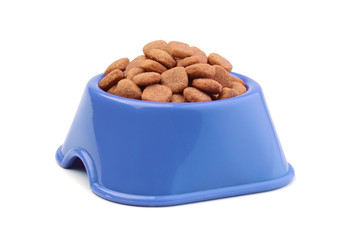 Dry cat food in a bowl isolated