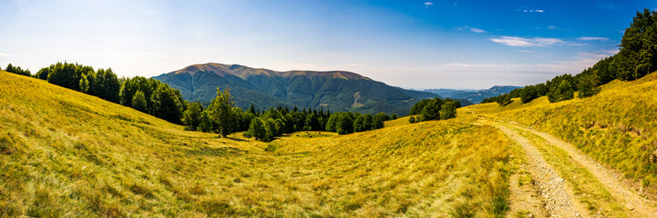 Panorama of Carpathian mountains in summer. Mountain Apetska in the distance. road through grassy meadow and forested hillsides. wonderful travel destination. location TransCarpathia, Ukraine
