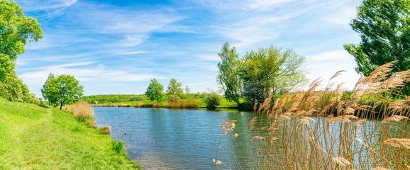 romantische Teichlandschaft in Deutschland