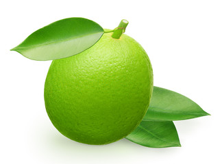 Whole fresh lime fruit and green leaves isolated on white