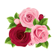 Vector pink and burgundy roses isolated on a white background.