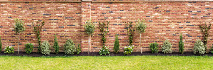 Panoramic Image Of A Newly Planted Garden Or Back Yard Of Hardy Trees,  Shrubs And