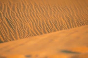 Sand dunes in Thar Desert during the sunset, Rajasthan, India.