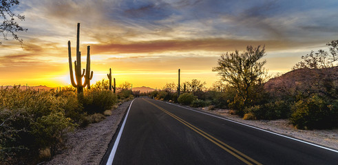 Foto op Plexiglas Arizona Arizona Desert Sunset Road