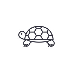 turtle vector line icon, sign, illustration on white background, editable strokes