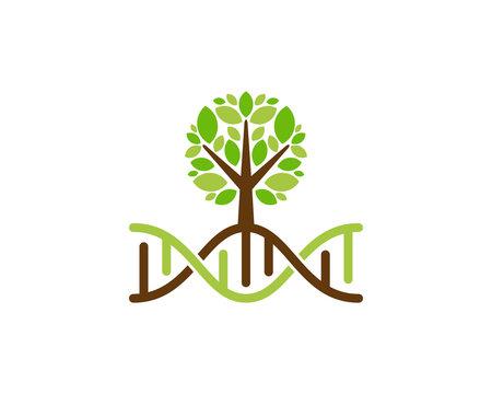 Dna Tree Icon Logo Design Element