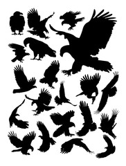 Eagle detail silhouette. Vector, illustration.Good use for symbol, logo, web icon, mascot, sign, or any design you want.