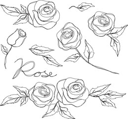 rose sketch vector vintage