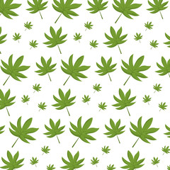 natural leaf tropical style background