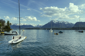 Sailing boats in port at lake Thun infornt of Alps mountain