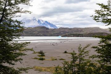 Descent to Lago Grey Patagonia